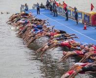 Swimstart στην αρχή ενός triathlon Στοκ φωτογραφία με δικαίωμα ελεύθερης χρήσης