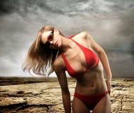 Swimsuit Stock Photo