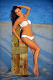Swimsuit model with perfect fit body posing on the beach Royalty Free Stock Photos