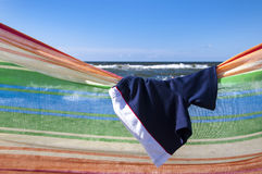 Swimsuit or trunks Royalty Free Stock Image