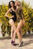 swimsuites的美丽的性感的女孩在夏天靠岸 库存照片