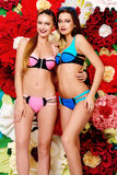 Swimsuits fashion royalty free stock photography