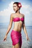 Swimwear Stock Foto