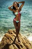 swimwear seksowna kobieta drzewo pola Zdjęcie Royalty Free