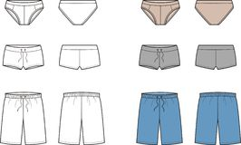 Swimwear. Vector illustration of men's swimming trunks. Front and back views Royalty Free Stock Image