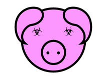 Swine Stock Images