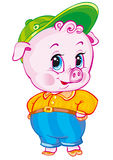 Swine Royalty Free Stock Photo