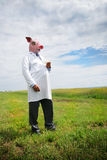 Swine flu Stock Images