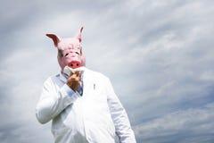 Swine flu Royalty Free Stock Image