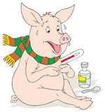 Swine flu. Vector clip-art / funny character for your design Royalty Free Stock Photo