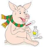 Swine flu Royalty Free Stock Photo