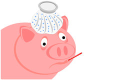 Swine flu Royalty Free Stock Photos