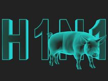 Swine Flu. Royalty Free Stock Photography