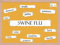 Swine Flu Corkboard Word Concept Stock Photo