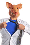 Swine Flu metaphor Stock Photography