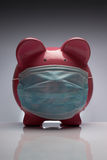 Swine flu pig with mask. Swine flu pig H1N1 wearing protective mask royalty free stock images
