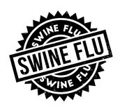 Swine Flu rubber stamp. Grunge design with dust scratches. Effects can be easily removed for a clean, crisp look. Color is easily changed Stock Photo