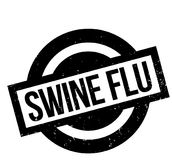 Swine Flu rubber stamp. Grunge design with dust scratches. Effects can be easily removed for a clean, crisp look. Color is easily changed Royalty Free Stock Photography