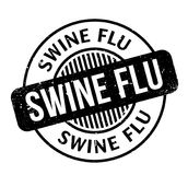 Swine Flu rubber stamp. Grunge design with dust scratches. Effects can be easily removed for a clean, crisp look. Color is easily changed Stock Photography