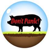 Swine flu virus Royalty Free Stock Photos