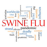 Swine Flu Word Cloud Concept Royalty Free Stock Images