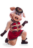 Swine mascot costume dance striptease in hat Royalty Free Stock Images