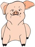 Swine Oink. Pink sitting pig vector illustration Royalty Free Stock Photography