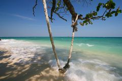 Swing. This's rope swing ,live at Koh Talu Island,Rayong,Thailand Stock Photos