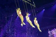 Swing acrobatics of three actress Stock Photography