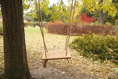 Swing in the autumn park with fallen maple leaves royalty free stock image