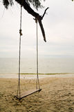 Swing on the beach. Swinger hang on tree on the beach Stock Photos