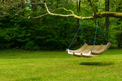 Swing bench in lush garden. Curved swing bench hanging from the bough of a tree in a lush garden with woodland backdrop for relaxing on hot summer days stock photos