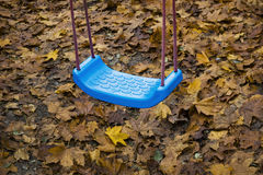 Swing. Blue swing and Autumn leaves stock image