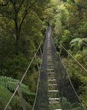 Swing Bridge Royalty Free Stock Image