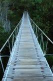 Swing Bridge. A suspension bridge leading to the dark dense jungle Stock Photography