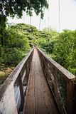Swing bridge at the Menehune Ditch Royalty Free Stock Images