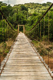 Swing bridge into tropical forest Stock Image