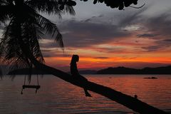 Swing or cradle hang on coconut tree shadow beautiful sunset with relax women girl sit on tree at koh Mak Island beach Trad T royalty free stock photography
