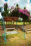 Swing in garden. Swing  in the home garden Royalty Free Stock Image