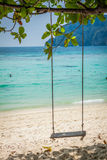 Swing hang from coconut tree over beach, Phi Phi Island, Thailan Stock Photography
