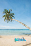 Swing hang from coconut tree over beach sea. Phuket,Thailand Stock Image