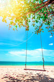 Swing hang from coconut tree over beach Stock Images