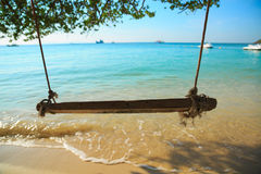 Swing hang on tropical beach Stock Image