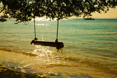 Swing hang on tropical beach Stock Photo