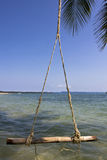 The swing hanging on the coconut tree Royalty Free Stock Image
