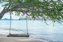 Swing hanging on tree on the beach Royalty Free Stock Photography