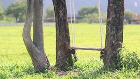 Swing hanging from a tree in field stock footage