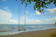 Swing hanging under the tree on beach Stock Images