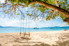 Swing hanging under the tree on the beach Royalty Free Stock Image