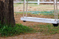 Swing. Old wooden swing under a tree with a rope tie royalty free stock photography